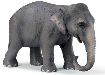 Comprar un elefante