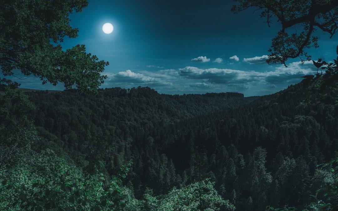 Regalar la luna, cuento zen sobre las posesiones